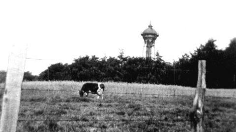 Dönberger Wasserturm